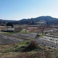 2010-1219 山津見神社 虎捕山を望む